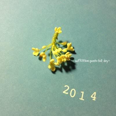 TheDay_2014010101